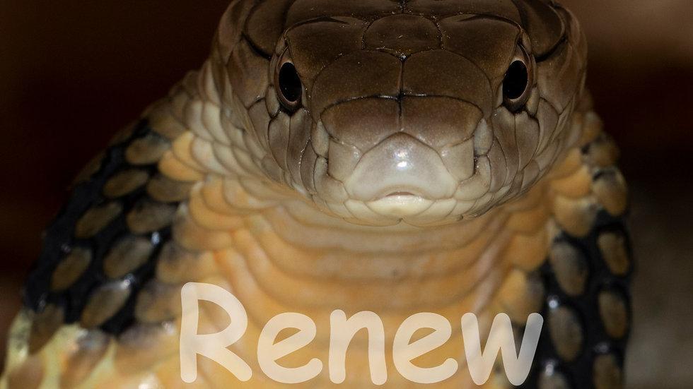 RENEW - KING COBRA ~ Couples Membership