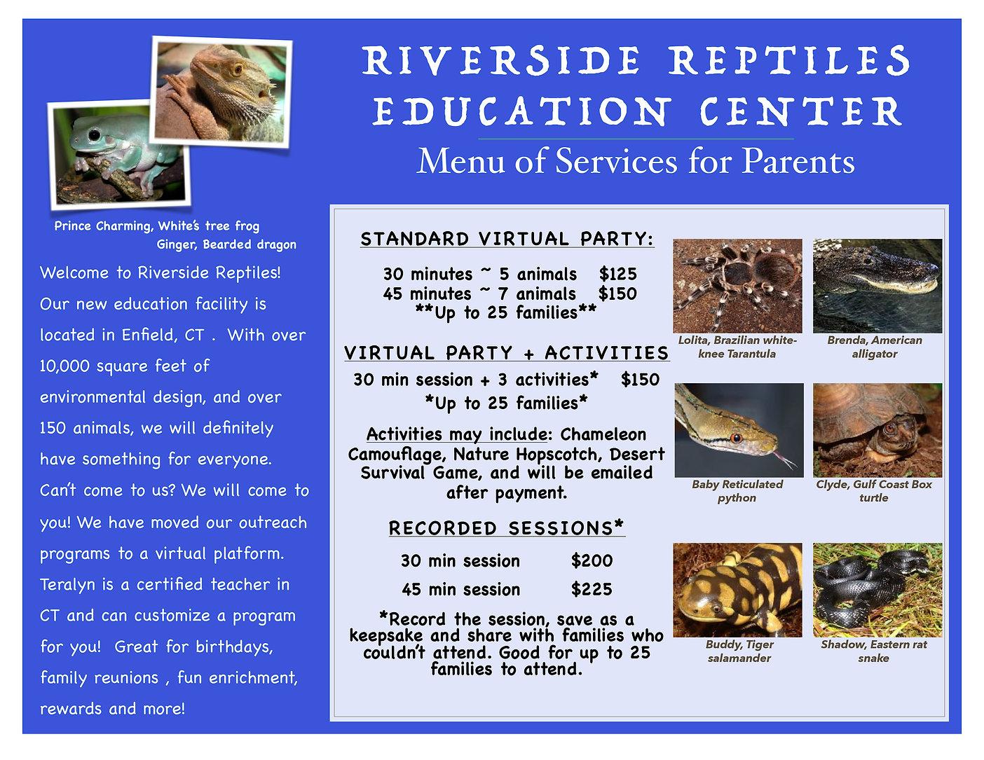 Virtual Parents PDF.jpg