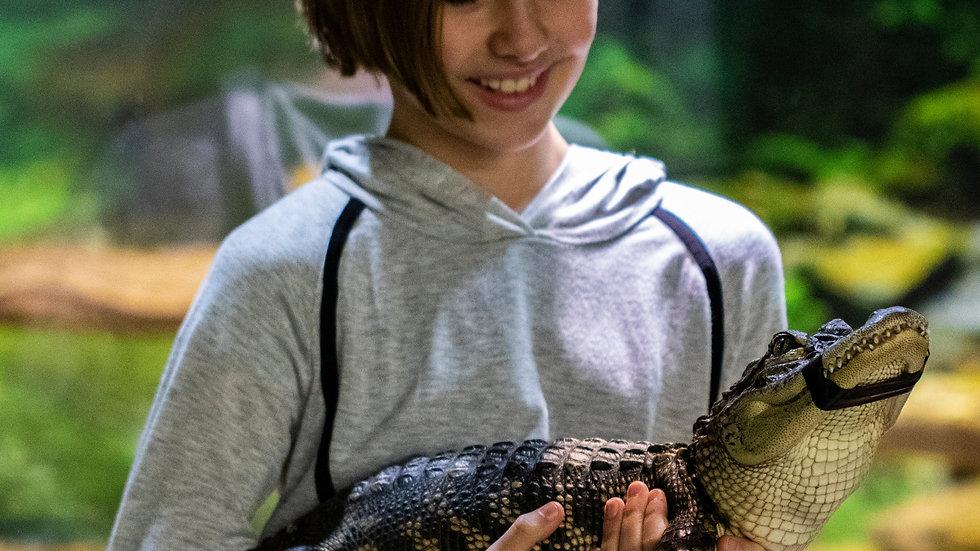 Zookeeper Adventure NON-MEMBER