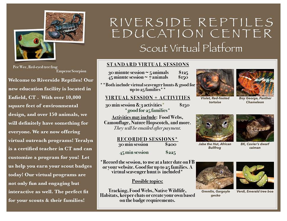 Virtual Scouts PDF.jpg