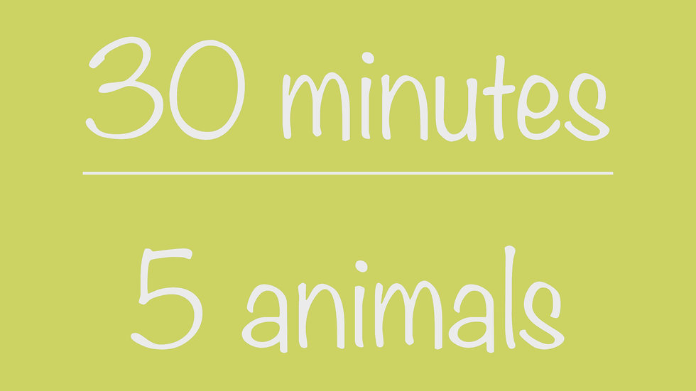 Library 30-minute Virtual Program