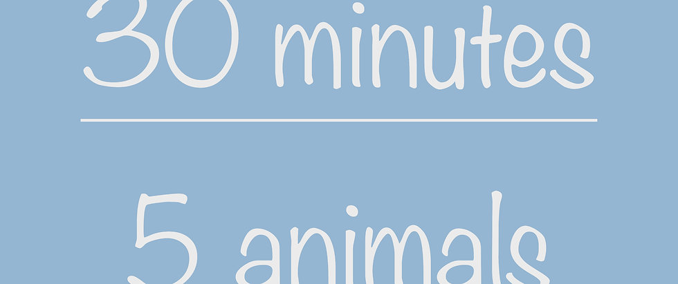 High School 30-minute Virtual Program