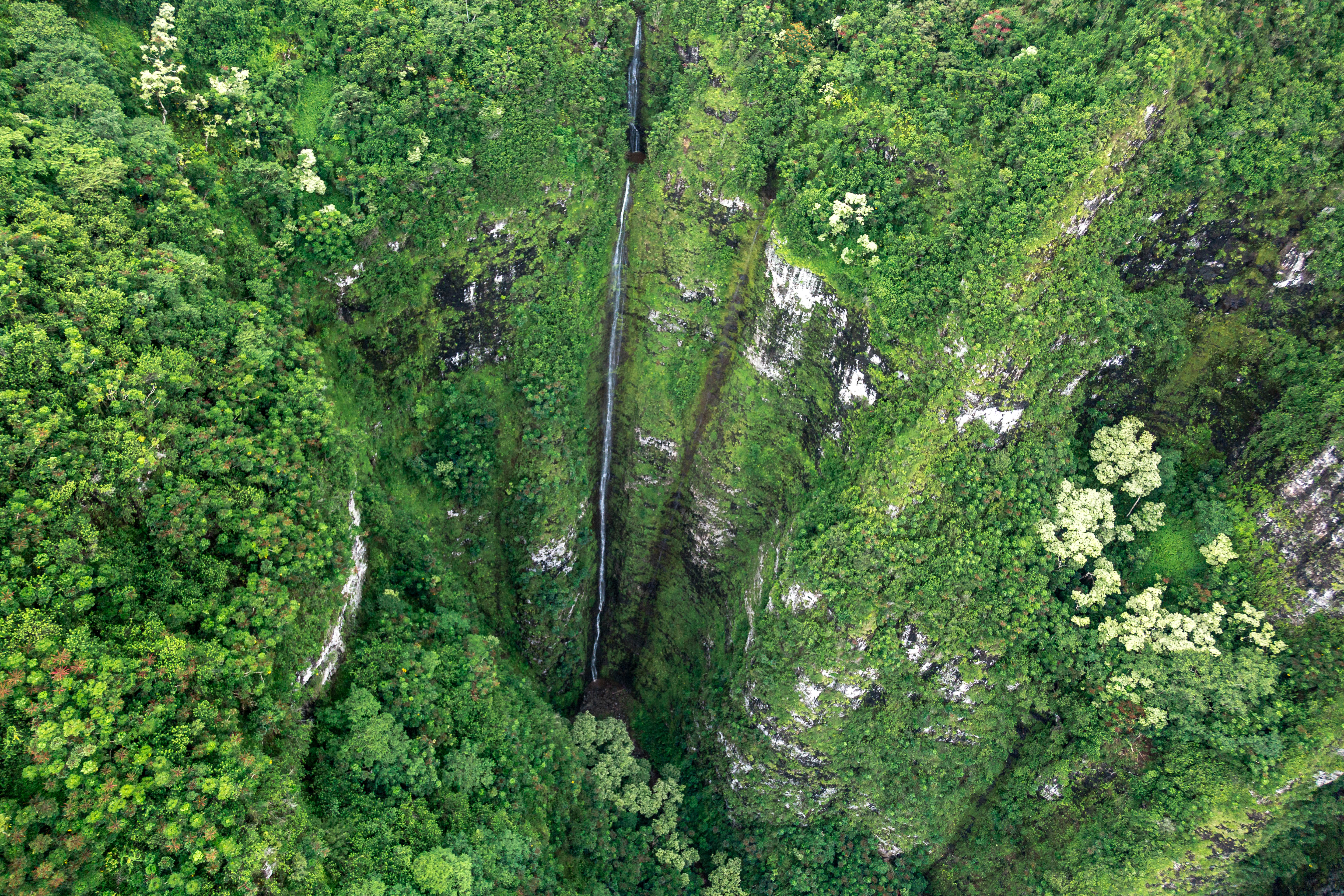 Hawaii Waterfall via Helicopter