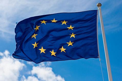 EU flag.jpeg