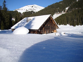 Alpin Hütte