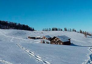 Schafbergblick Hütte