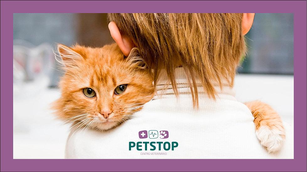 _App-Petstop5.jpg