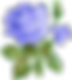 picgifs-flowers-799659_edited.png