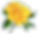 picgifs-flowers-44190_edited.png