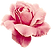 graphics-roses-662921_edited.png