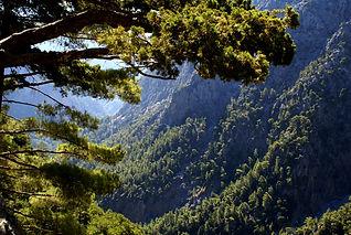 Part of Samaria Gorge