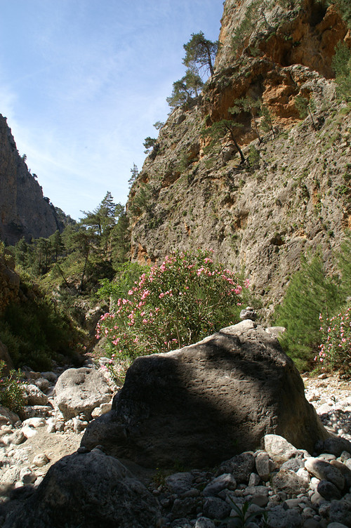 Agia Irini Gorge, close to Sougia
