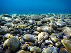 Sougia Deep Sea