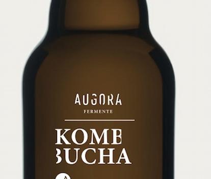 Kombucha | unpasteurisiert | Augora