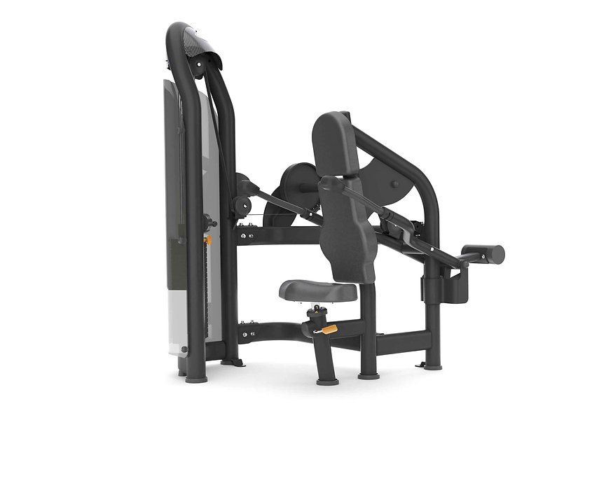 Aura Triceps Press