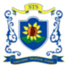 STS PNG LOGO.png