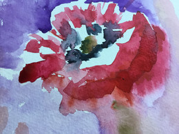 Two wonderful poppy studies.