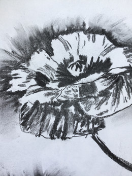 More wonderful charcoal poppies...