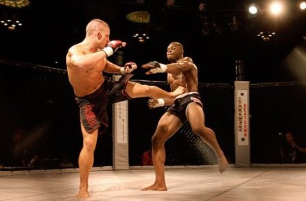 MMA Cage Fighting