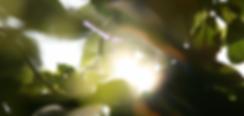 Bildschirmfoto 2019-01-18 um 10.46.21.pn