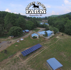 Happy Place Farm,  Hayesville, NC