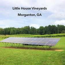 Little House Vineyards,  Morganton, GA