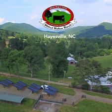 Walnut Hollow Ranch,  Hayesville, NC