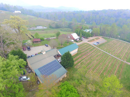Crane Creek Vineyards Young Harris, GA