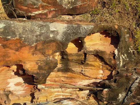 New South Wales trip Aug 09 251.jpg