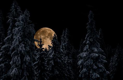 Joakim Agartson Photography _ WinterDSC_