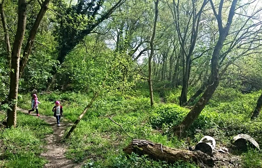 Láska k prírode