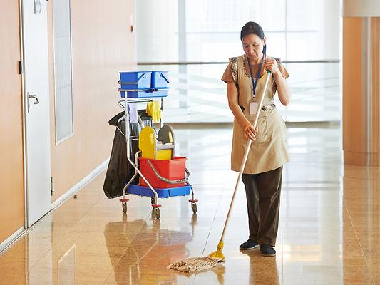 Female-cleaner-maid-woman-work-49894088.