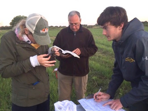 IBCP co-authors new publication on songbirds in the North American Great Plains
