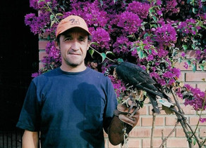 """The """"Oscar Beingolea Raptor Research Grant""""-announced by IBCP"""