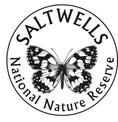 SNNR Logo White.png