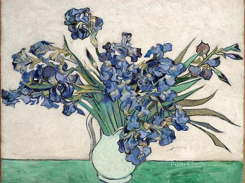 Irises in White
