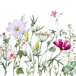 Spring Flowers with Stems