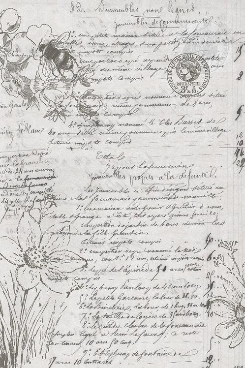 Natural History Script
