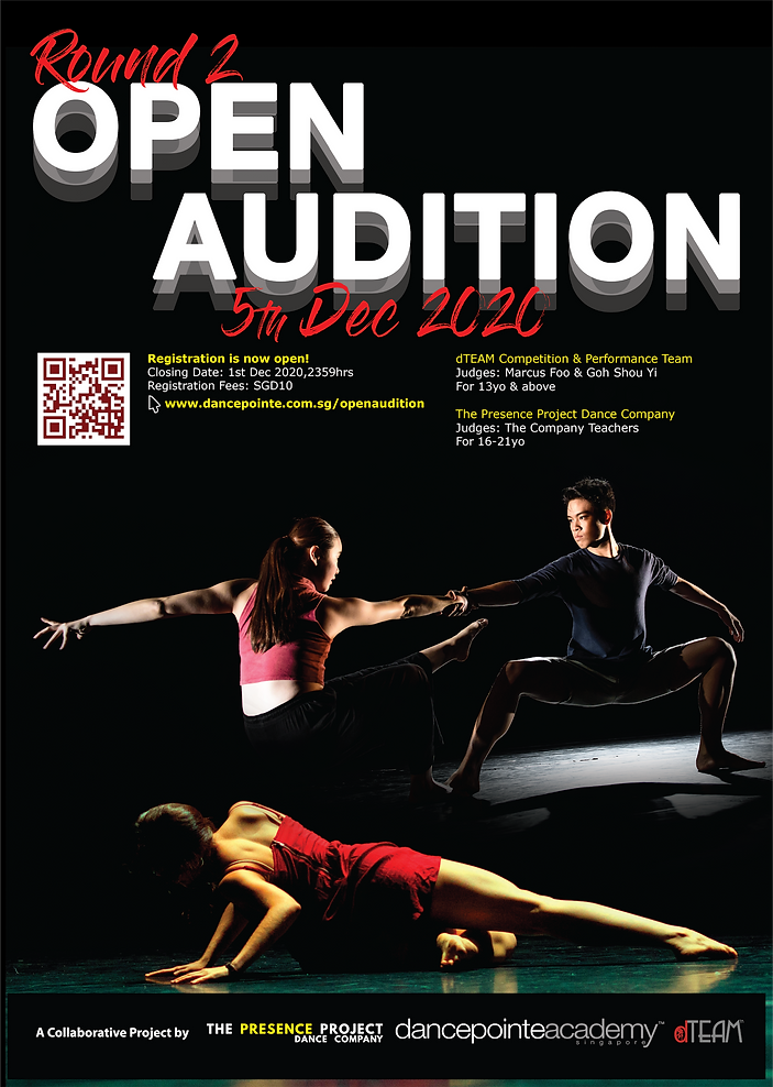 dTEAM_TPPDC_Dec Audition For Web.png