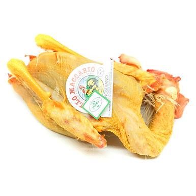 Pollo Nostrano Intero | 1200 gr