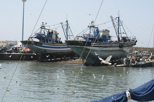 harbor essaouira