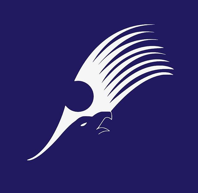 Logo%20sinisell%C3%A4%20pohjalla_edited.