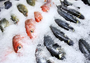 Fish-on-ice-GettyImages-171105638-587c40