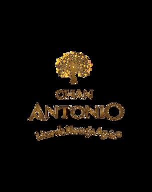 Chan Antonio