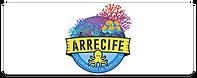arrecife.png
