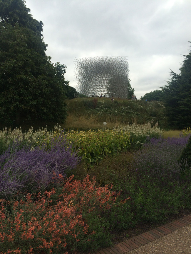 Royal Botanic Gardens, Kew, speaks at our Healthy Cities forum