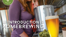Celebrate National Homebrew Day!
