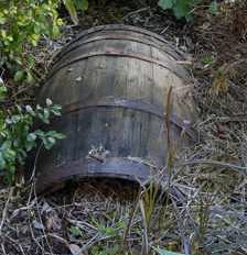 Murder Mystery NYC Diaries - Case #8: The Body in the Barrel
