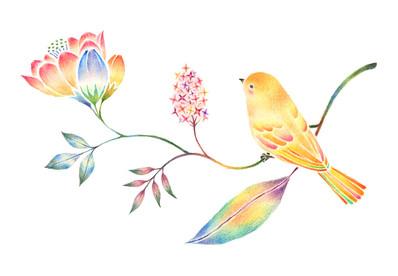 黄色の小鳥と草花