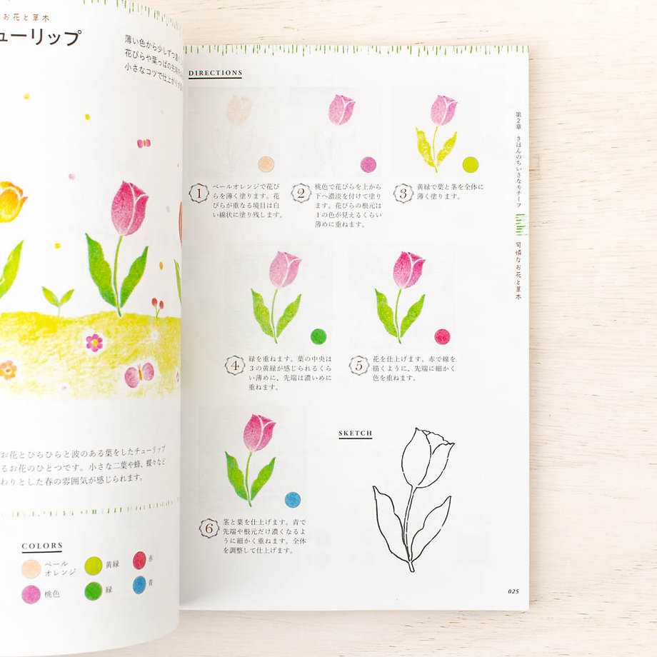 Picture Book, Illustrations Book Drawn with 12 Colored Pencils